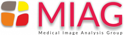 Medical Image Analysis Group Logo